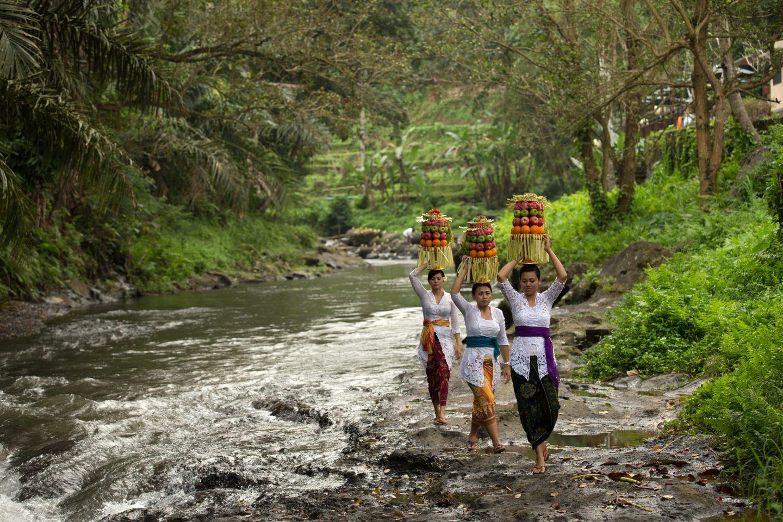 The Samaya Ubud
